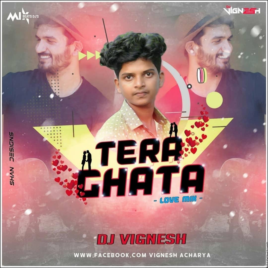 TERA GHATA DJ VIGNESH .mp3